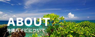 沖縄ハイビについて